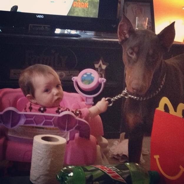 This dog that will follow orders, no matter how strange they may be.