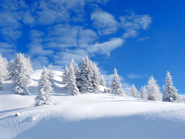 Winter haters, step aside, because today we're talking about why snow is awesome.