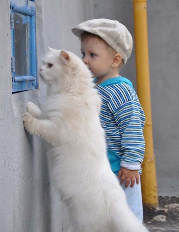 The day this kid and his cat decided to plot their escape together ...