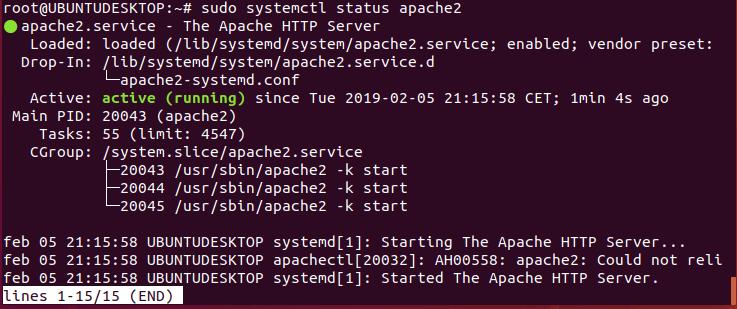 instalar servidor web en ubuntu 18 _01