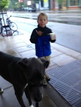 Taking Blue and Testiclese out for a morning walk.