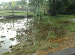 A lawn turned into a swamp