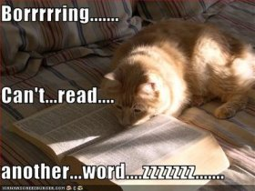 boring-book-cat