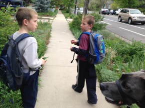 Our daily walk for the last few weeks of school.