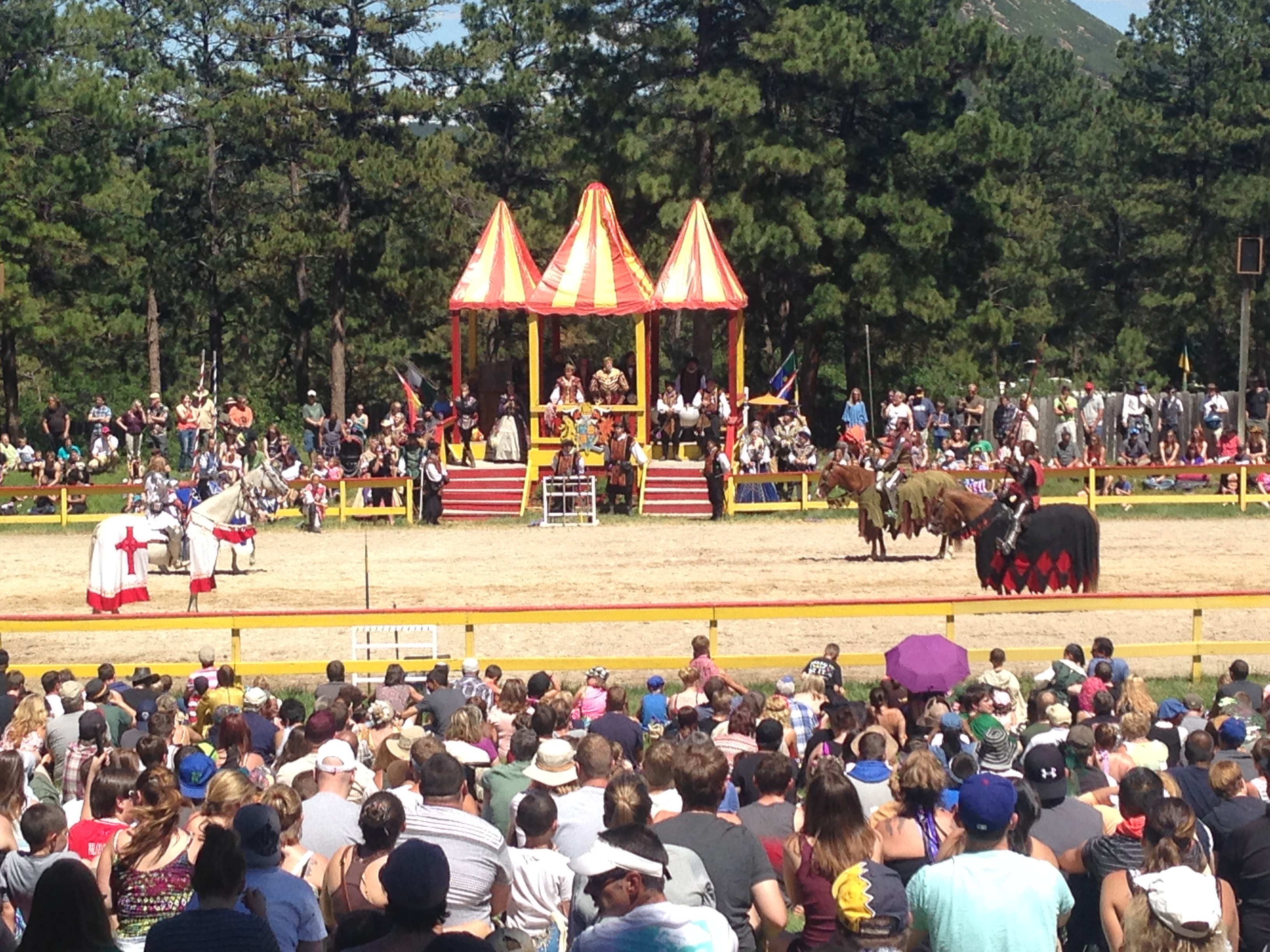 Jousting TO THE DEATH