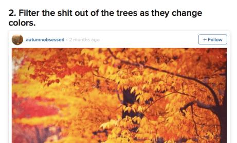 Screen Shot 2014-10-21 at 10.10.19 AM