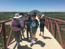 Walking the 1.5 mile elevated walkway