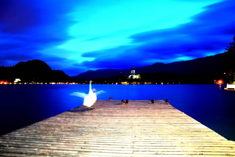bled slovenia photographs