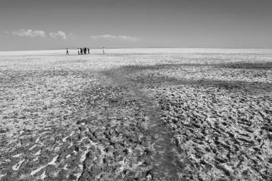 White Desert - Salt deposits over a vast area creates a unique landscape