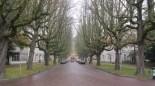 Den Haag - The Haia, Holanda (75)