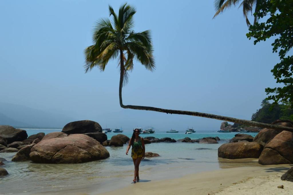 Ponto turístico da Ilha Grande: Coqueiro da Praia de Aventureiro