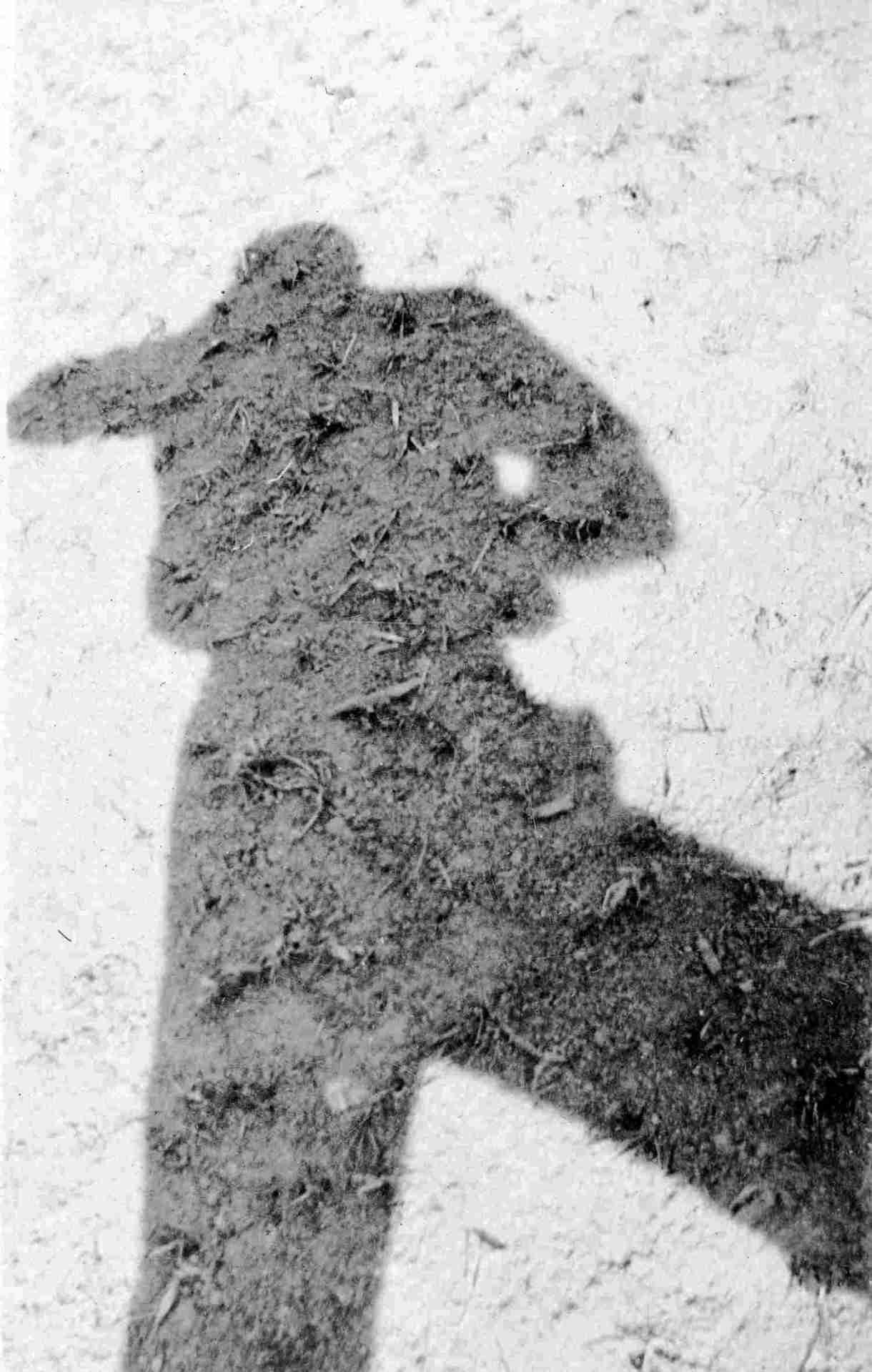 o Autorretrato de Mário de Andrade e sua conexão com o filme Fotografação. Veja no Vivente Andante,