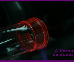 A fórmula do sucesso: 6 passos que conduzem à fórmula DEFINITIVA do sucesso!