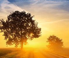 7 etapas para trazer riquezas para sua vida.