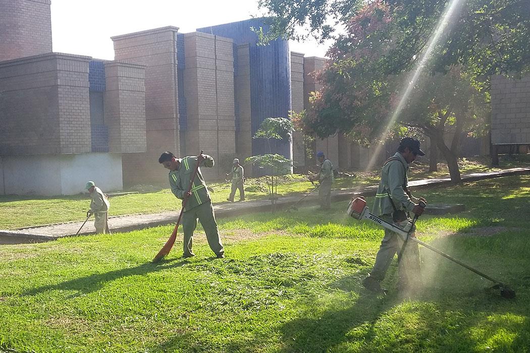 21- Jardin- Viverdi México Jardinería y Fumigación - viverdimexico.com