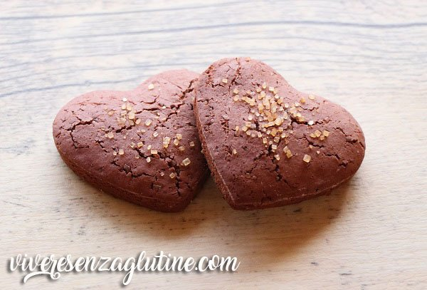 Cocoa biscuits gluten free and lactose free
