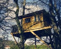Basoa Treehouse Resort
