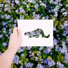 animals-silhouettes-natural-landscapes-nikolai-tolstyh-18