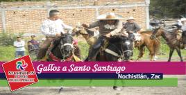 Gallos a Santo Santiago