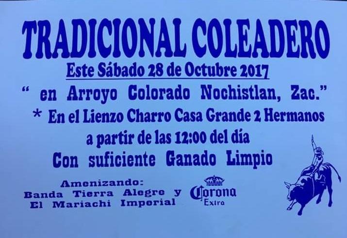Coleadera en Arrollo Colorado