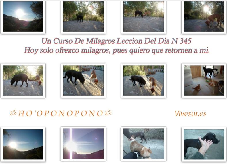 wpid-111213-2013-12-11-09-42.jpg