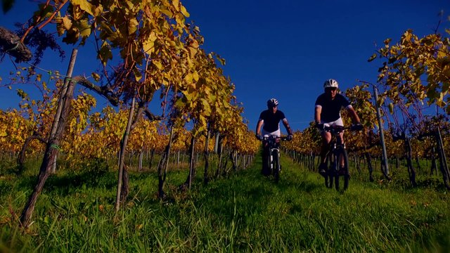 Viaggio in bicicletta in Toscana fra le colline del Chianti e la Maremma
