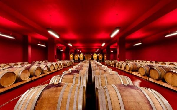 Cantina Tramin – i vini biologici e biodinamici del Sud Tirolo
