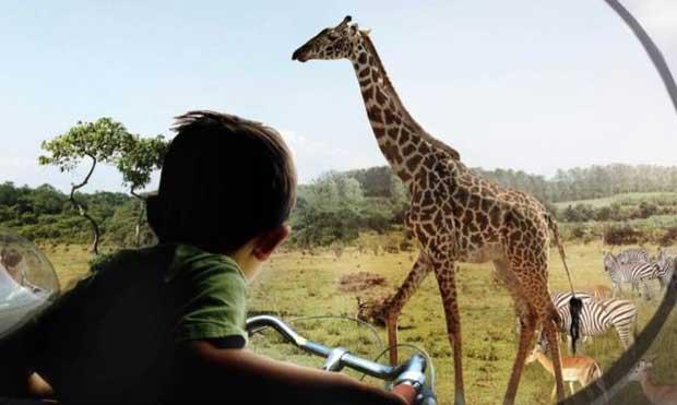Nasce Zootopia lo zoo del futuro in Danimarca