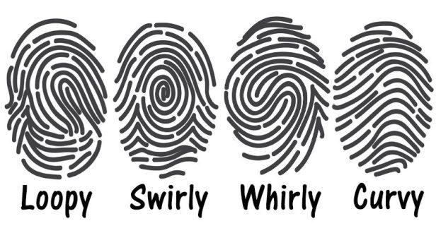 fingerprints-FI-800x419