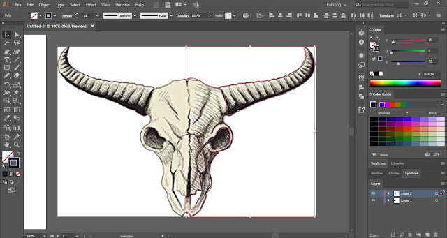 draw outline on half of the skull