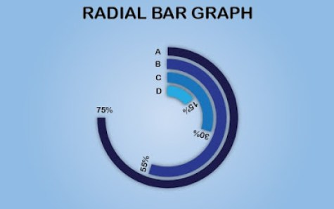 Radial Bar Chart | Graph in Adobe Illustrator