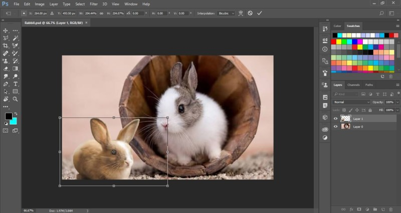 Drag the Bounding Box to Resize the Layer