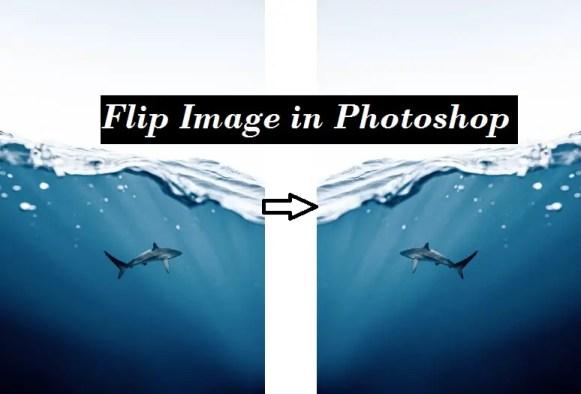 Flip Image in Photoshop