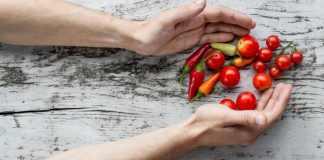 vegan probiotics