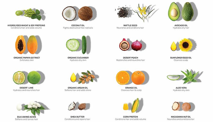 Eleven Ingredients
