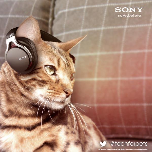 Sony-Animalia-M3-OW