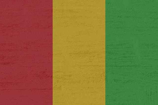 Mali bandera