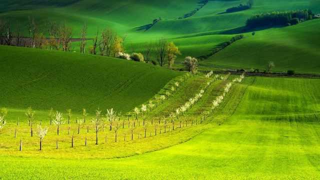 Moravia paisaje