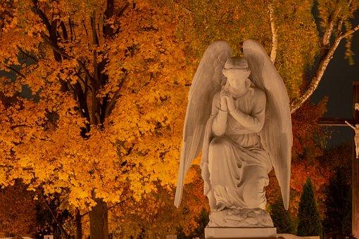 estatua ángel, árbol, cementerio