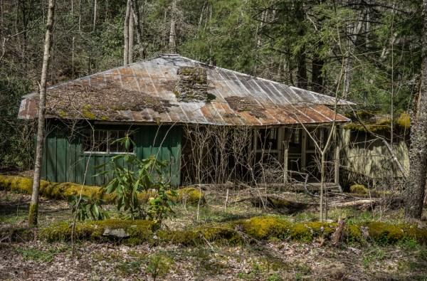 goldman_vivien_Elkmont-Smokey-Mountains-National-Park20