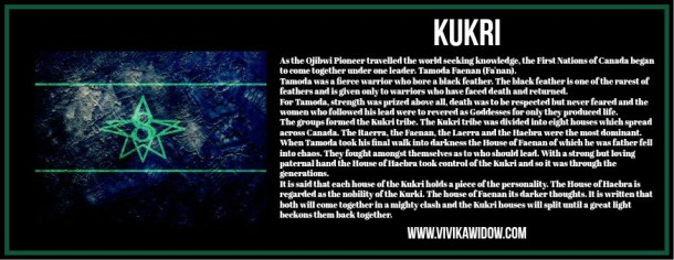KURKI_vivikawidow_groupprofile