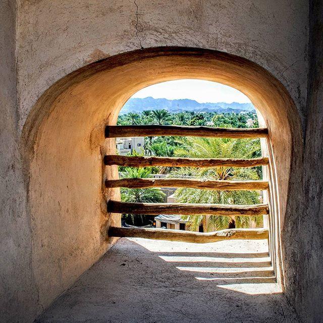 Nizwa, seen from an old window in the Nizwa Fort.  #nizwa #nizwafort #oman #muscat #sultanateofoman #travel #travelphotography #amateurphotography #amateurphotographer #photography #photographer