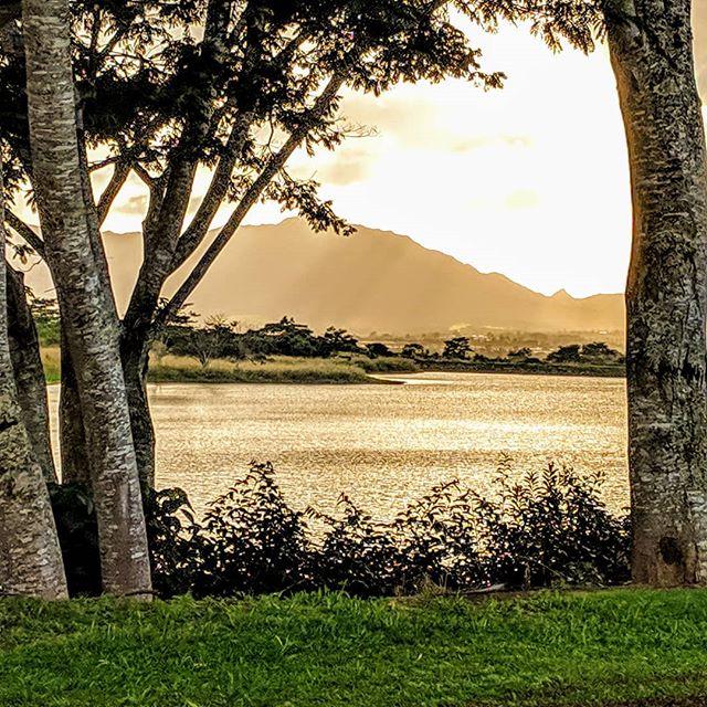 Sunset on a lake at the Dole plantation.  #hawaii #doleplantation #dole #scenery #nature #sceneryphotography #sunset #goldenhour #photographer #photography #amateurphotographer #amateurphotography #mobilephotographer #mobilephotography