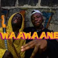 King Paluta x Alhaji Bull x Edey Bee – Waawaane (Official Video)