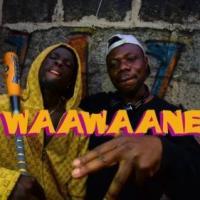 King Paluta x Alhaji Bull x Edey Bee – Waawaane (Official Video)