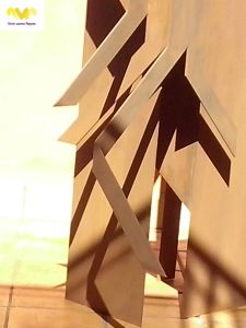Ficus macropylla_Marga Gª Pinto_detalle