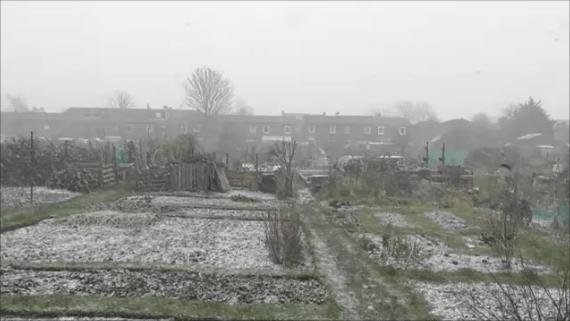 snow plot