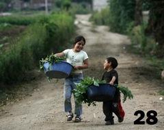500x396Guatemala - Niños