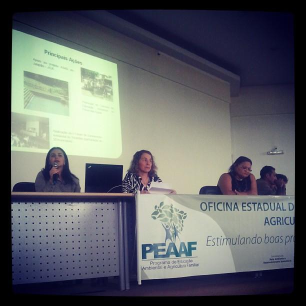 Os representantes estaduais apresentam os principais programas e ações vinculados no Estado do Tocantins em Educação Ambiental! #PEAAF