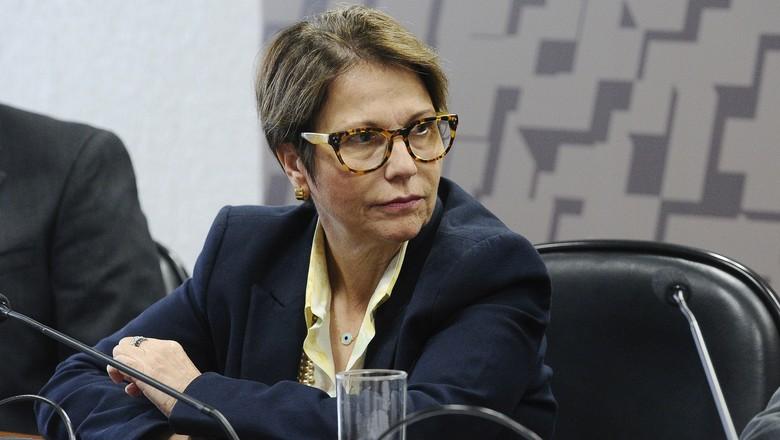 Governo Federal quer delegar às secretarias de agricultura a aprovação da Reserva Legal do CAR